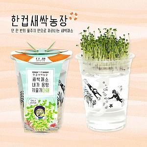 한컵새싹농장 다채(5세트)