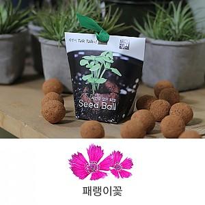 씨드볼 패랭이꽃(4개입)