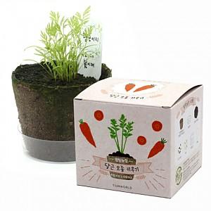 팜팜농장 당근(5세트)