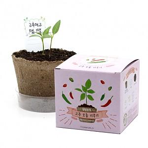 팜팜농장 고추(5세트)
